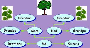Family Tree Generic Immediate